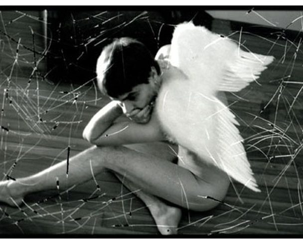 Angel wings 1